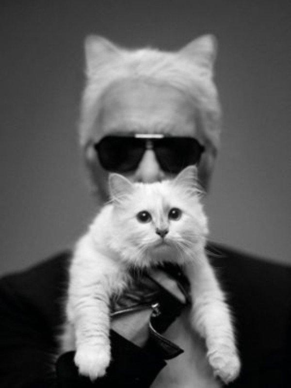 Karl Lagerfeld vuole sposare il suo gatto Choupette