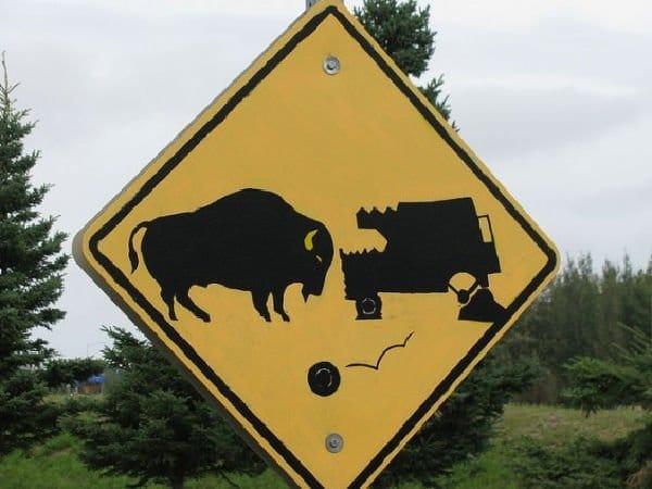 cartello stradale divertente (bisonte)