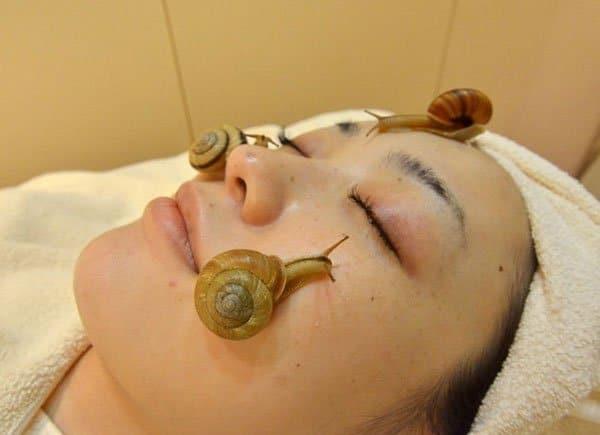 Trattamento di bellezza con lumache vive