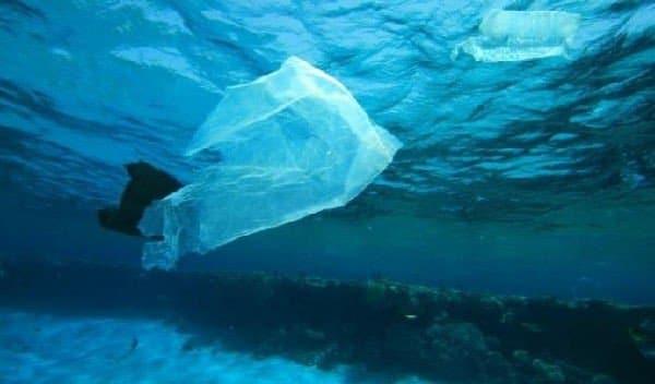Plastic Busters, la barca acchiappa plastica in mare