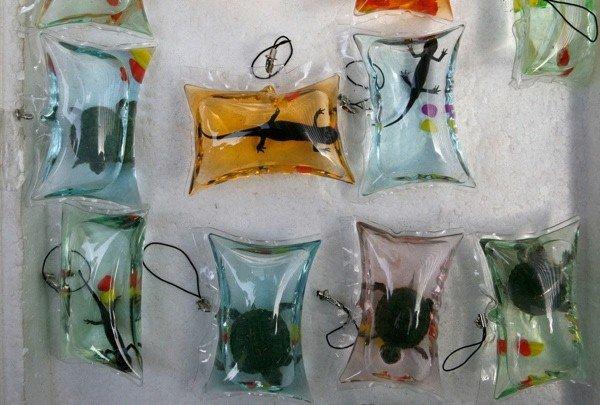 rettili assortiti essiccati, spiedini di scorpione e stelle marine, larve e insetti giganti